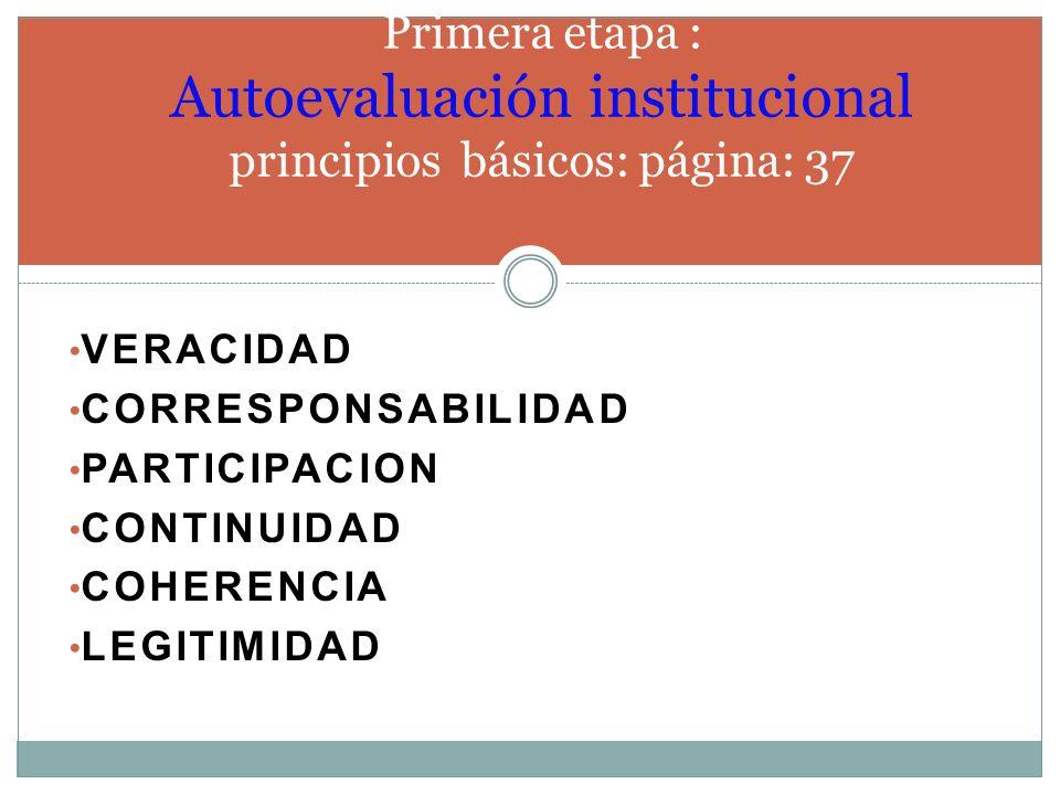 Primera etapa : Autoevaluación institucional principios básicos: página: 37