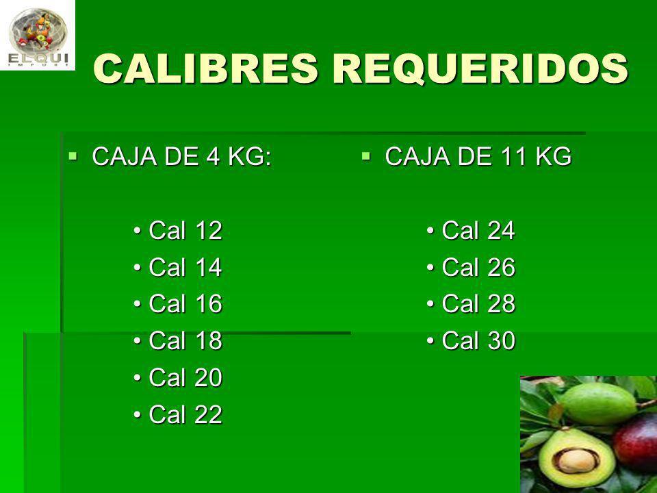 CALIBRES REQUERIDOS CAJA DE 4 KG: • Cal 12 • Cal 14 • Cal 16 • Cal 18