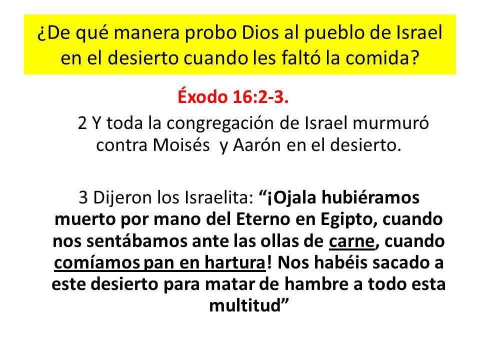¿De qué manera probo Dios al pueblo de Israel en el desierto cuando les faltó la comida