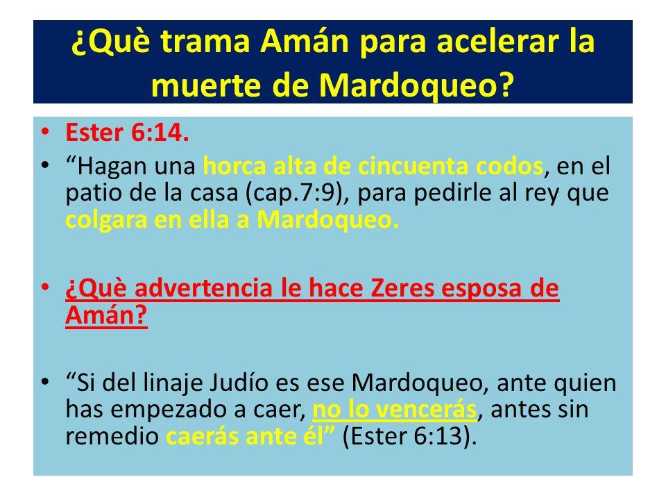 ¿Què trama Amán para acelerar la muerte de Mardoqueo