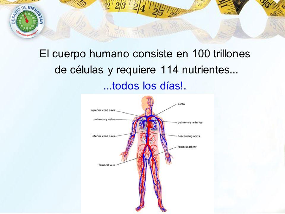 El cuerpo humano consiste en 100 trillones