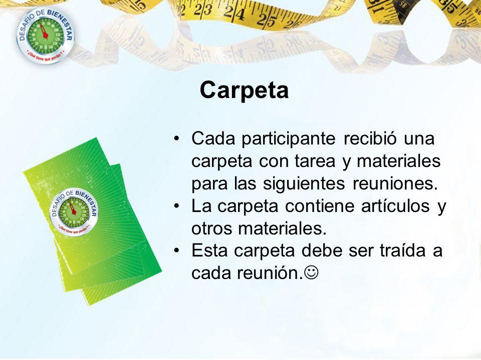 CarpetaCada participante recibió una carpeta con tarea y materiales para las siguientes reuniones. La carpeta contiene artículos y otros materiales.