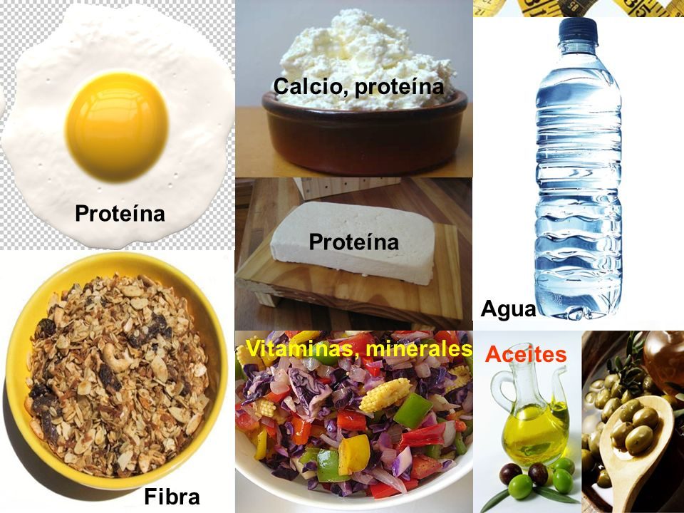 Calcio, proteína Proteína Proteína Agua Vitaminas, minerales Aceites Fibra