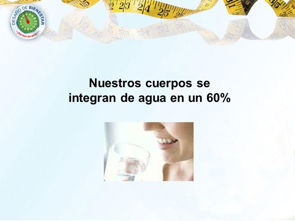 Nuestros cuerpos se integran de agua en un 60%