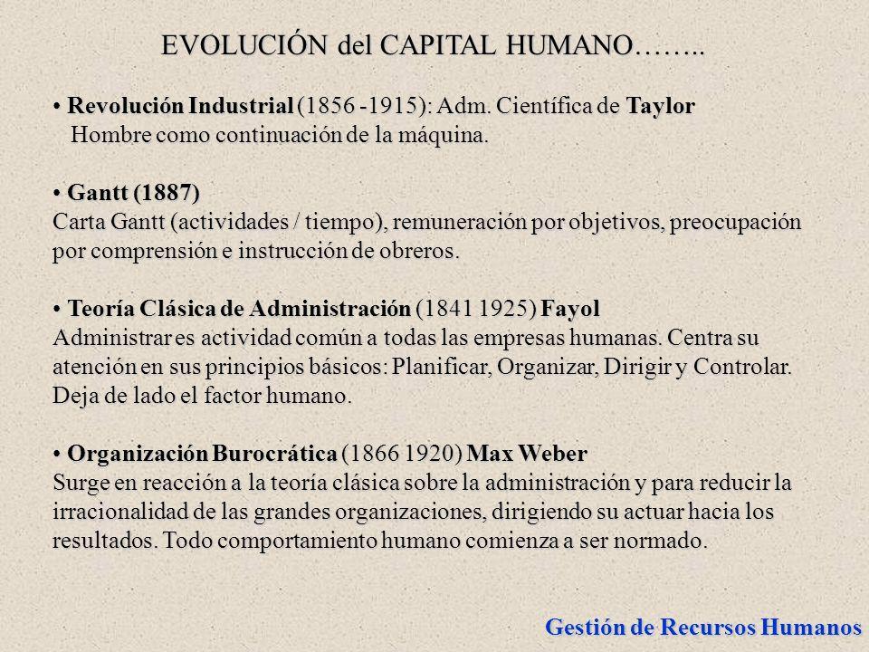 EVOLUCIÓN del CAPITAL HUMANO……..