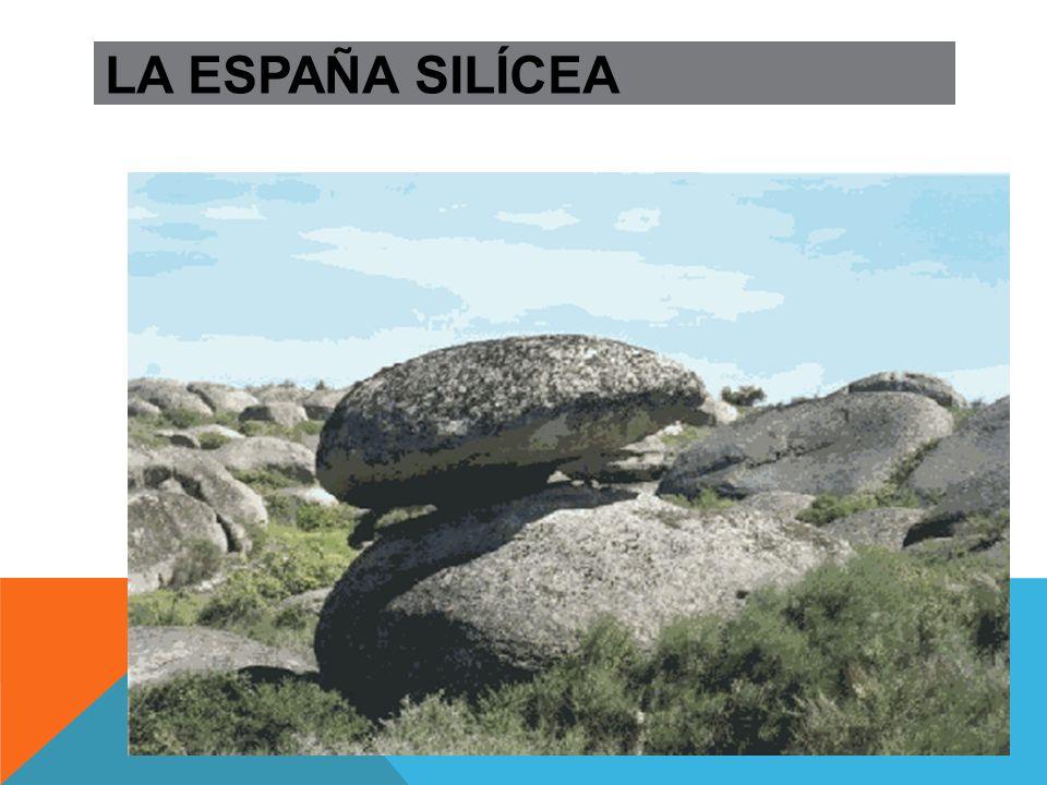 LA ESPAÑA SILÍCEA