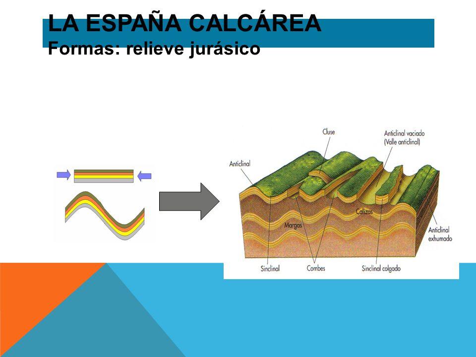 LA ESPAÑA CALCÁREA Formas: relieve jurásico