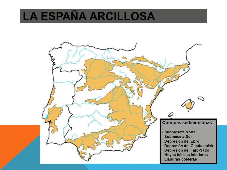 LA ESPAÑA ARCILLOSA Cuencas sedimentarias Submeseta Norte