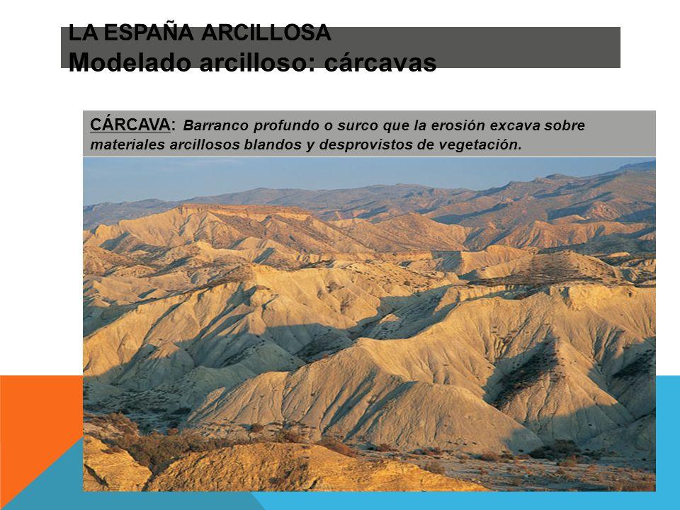 LA ESPAÑA ARCILLOSA Modelado arcilloso: cárcavas