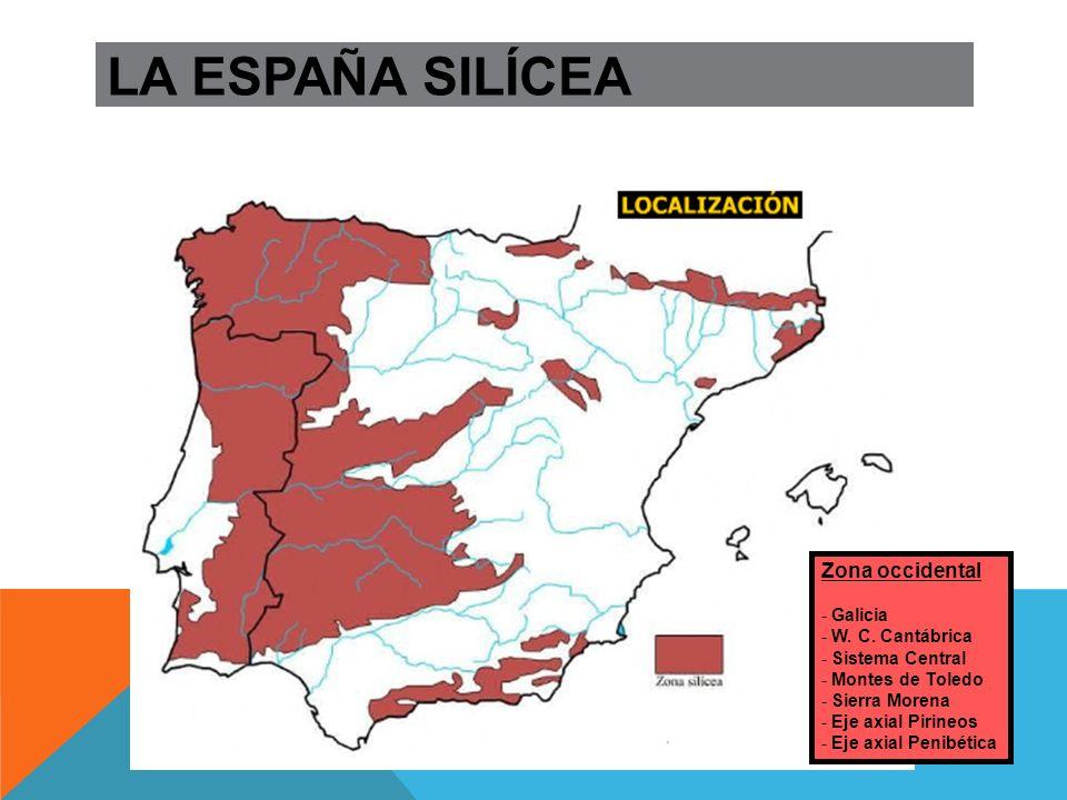 LA ESPAÑA SILÍCEA Zona occidental Galicia W. C. Cantábrica