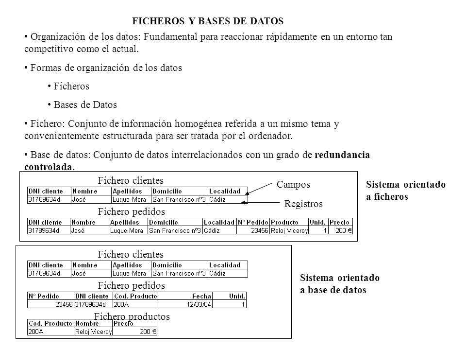 FICHEROS Y BASES DE DATOS
