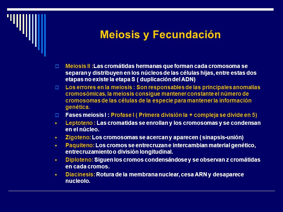 Meiosis y Fecundación