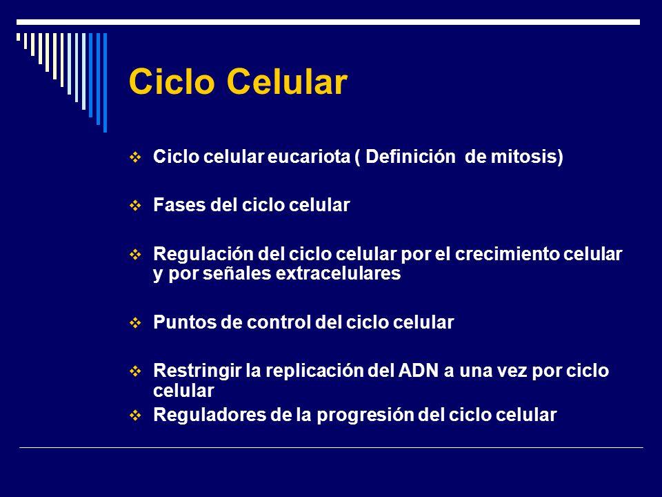 Ciclo Celular Ciclo celular eucariota ( Definición de mitosis)