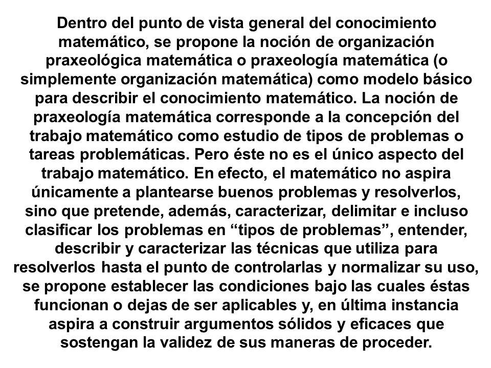 Dentro del punto de vista general del conocimiento matemático, se propone la noción de organización praxeológica matemática o praxeología matemática (o simplemente organización matemática) como modelo básico para describir el conocimiento matemático.