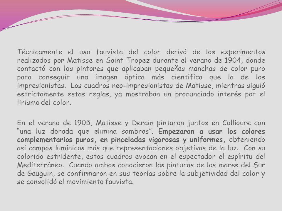 Técnicamente el uso fauvista del color derivó de los experimentos realizados por Matisse en Saint-Tropez durante el verano de 1904, donde contactó con los pintores que aplicaban pequeñas manchas de color puro para conseguir una imagen óptica más científica que la de los impresionistas. Los cuadros neo-impresionistas de Matisse, mientras siguió estrictamente estas reglas, ya mostraban un pronunciado interés por el lirismo del color.