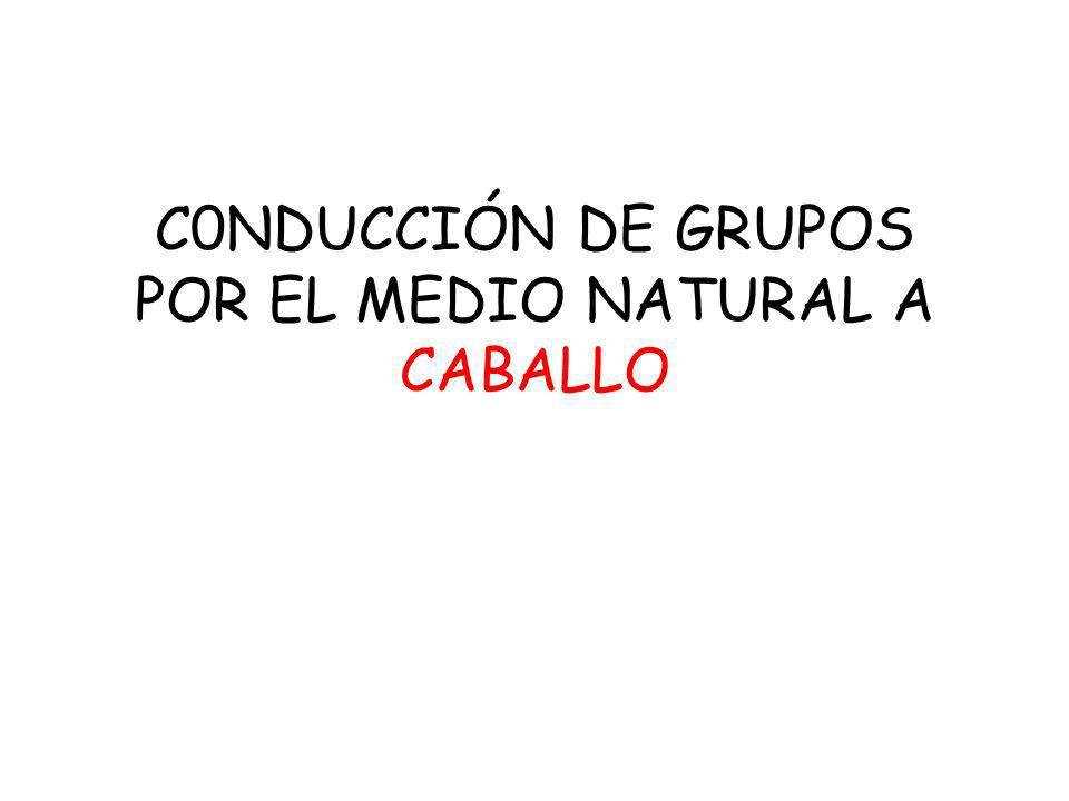 C0NDUCCIÓN DE GRUPOS POR EL MEDIO NATURAL A CABALLO