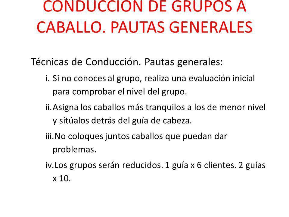 CONDUCCIÓN DE GRUPOS A CABALLO. PAUTAS GENERALES