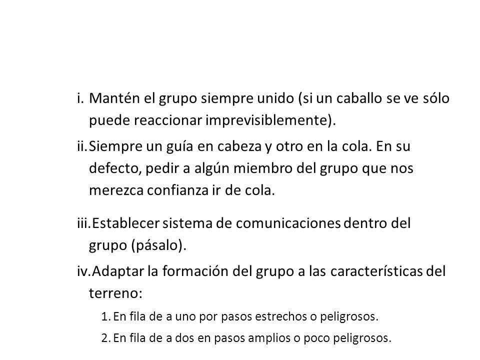 Establecer sistema de comunicaciones dentro del grupo (pásalo).