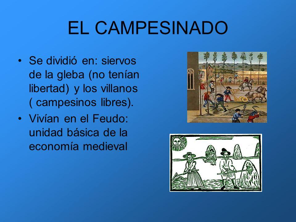 EL CAMPESINADO Se dividió en: siervos de la gleba (no tenían libertad) y los villanos ( campesinos libres).