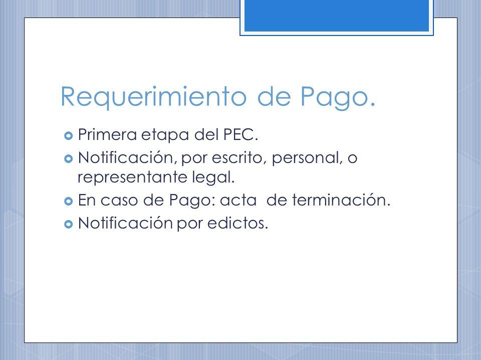 Requerimiento de Pago. Primera etapa del PEC.