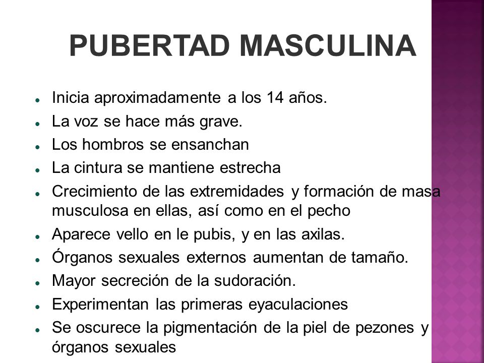 PUBERTAD MASCULINA Inicia aproximadamente a los 14 años.
