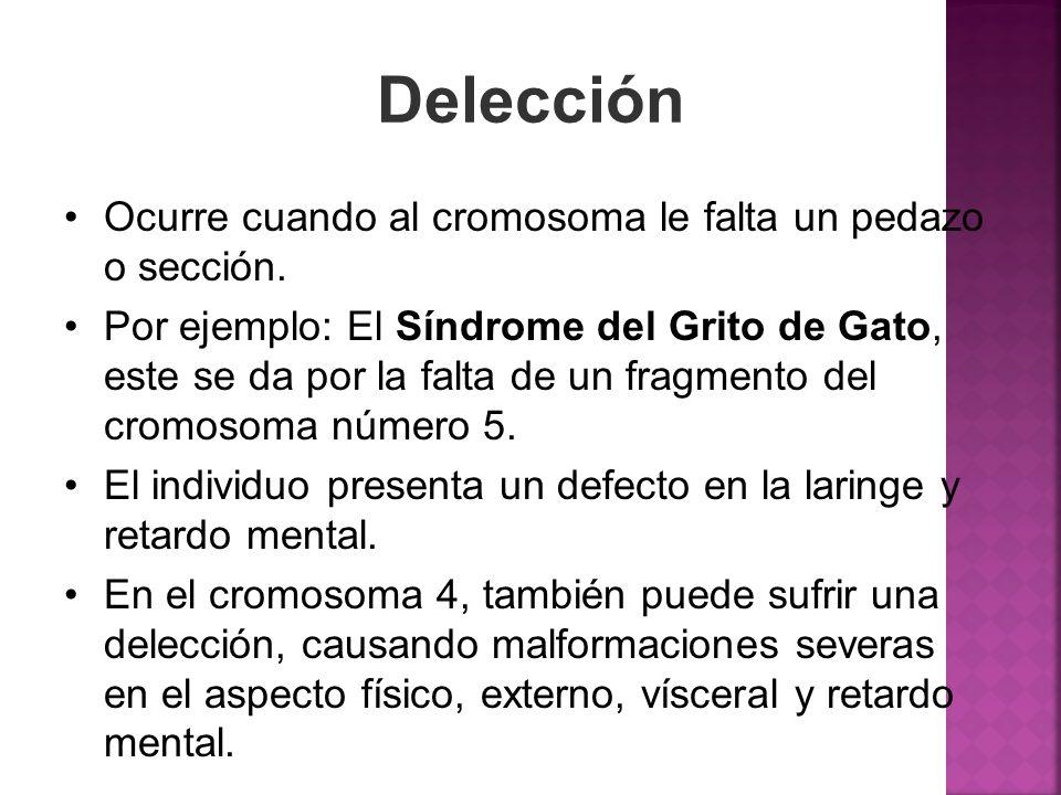 Delección Ocurre cuando al cromosoma le falta un pedazo o sección.