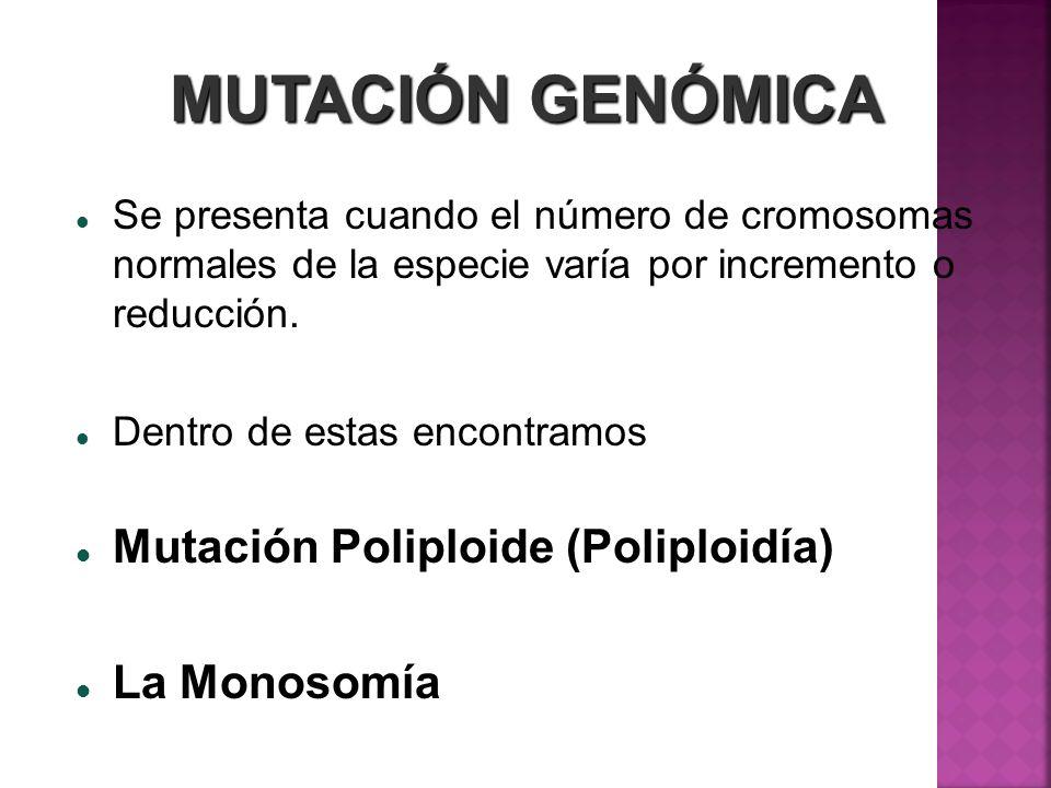 MUTACIÓN GENÓMICA Mutación Poliploide (Poliploidía) La Monosomía
