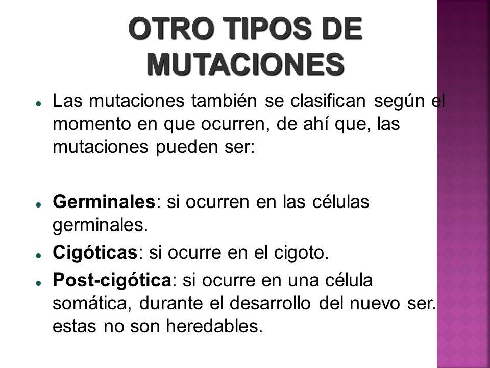 OTRO TIPOS DE MUTACIONES