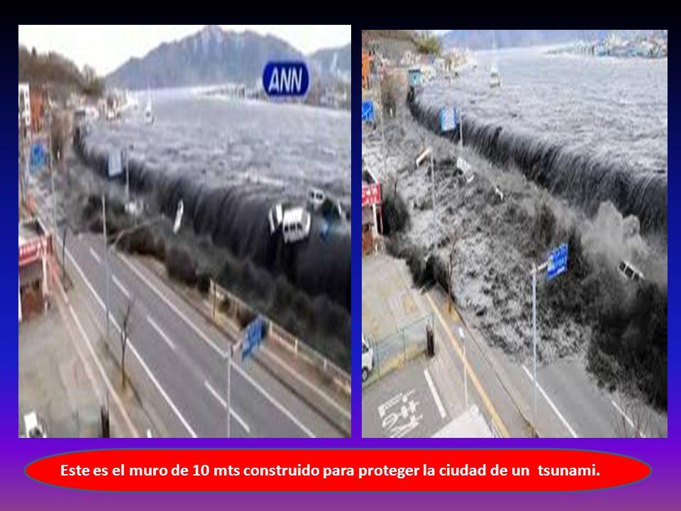 Este es el muro de 10 mts construido para proteger la ciudad de un tsunami.