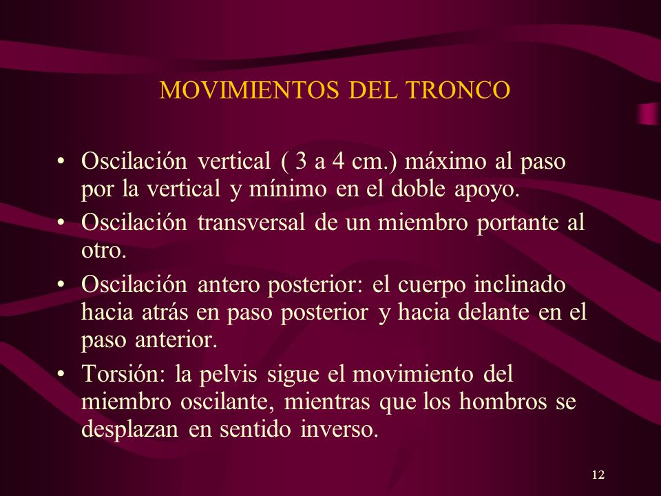 MOVIMIENTOS DEL TRONCO