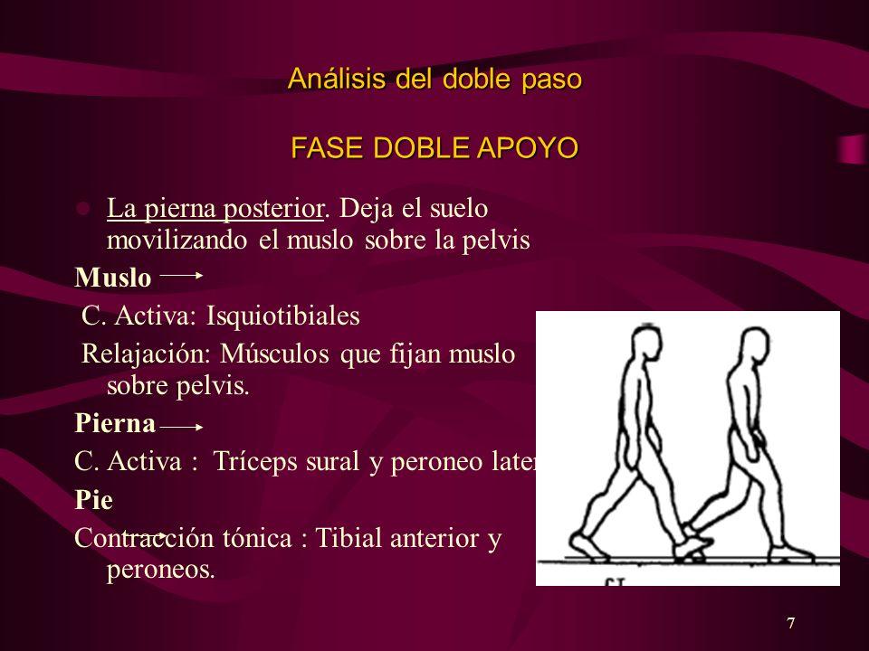 Análisis del doble paso FASE DOBLE APOYO