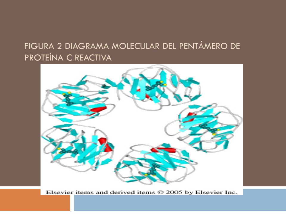 FIGURA 2 DIAGRAMA MOLECULAR DEL PENTÁMERO DE PROTEÍNA C REACTIVA