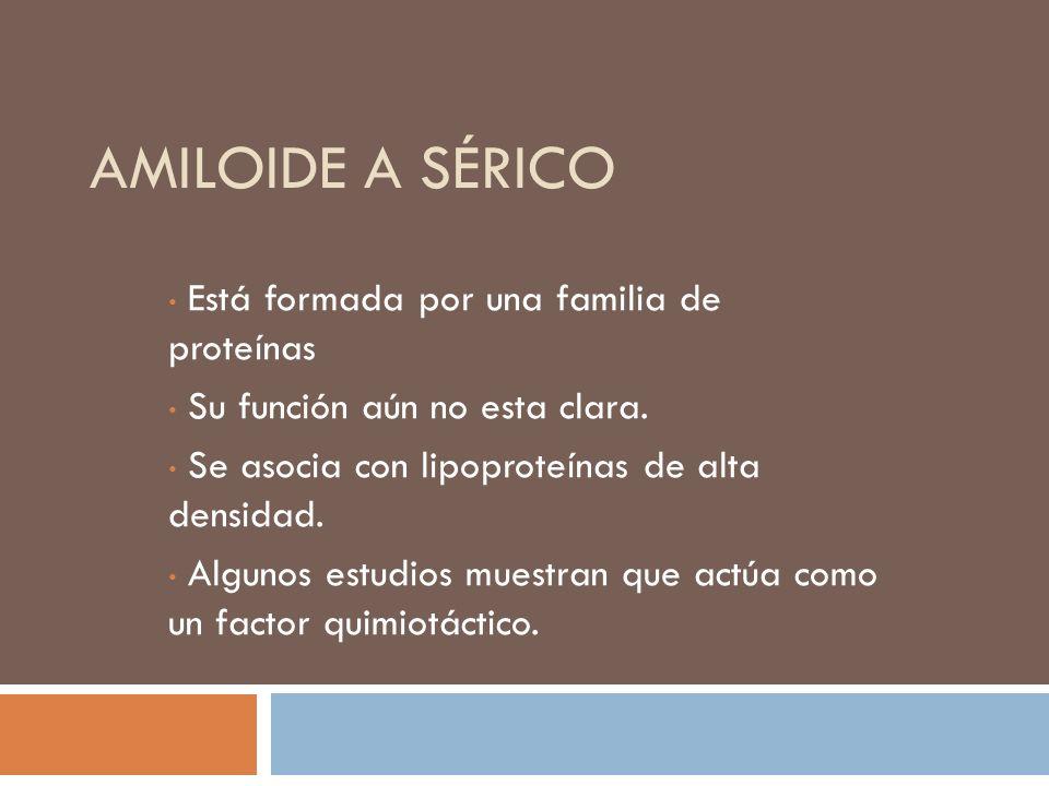 AMILOIDE A SÉRICO Está formada por una familia de proteínas