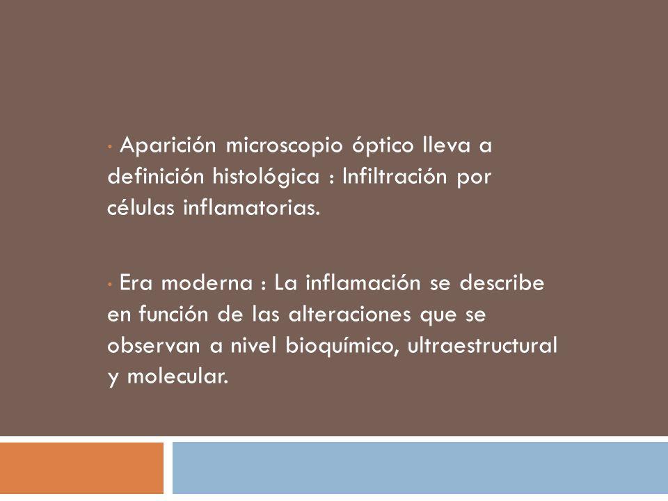 Aparición microscopio óptico lleva a definición histológica : Infiltración por células inflamatorias.