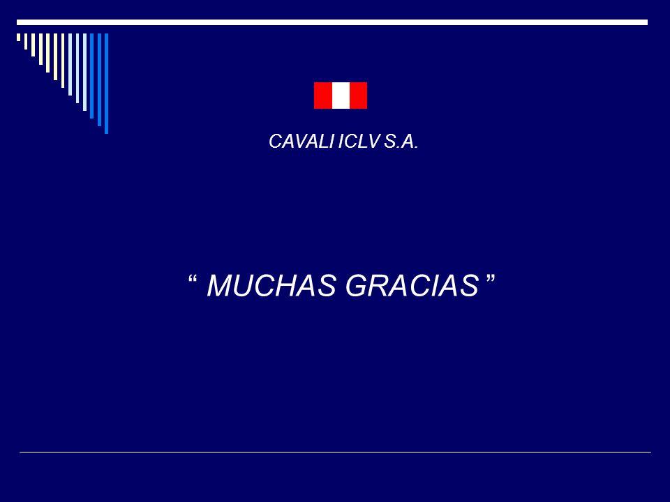 CAVALI ICLV S.A. MUCHAS GRACIAS