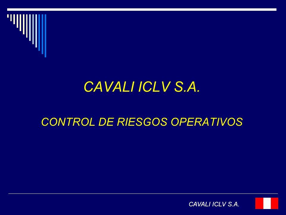 CONTROL DE RIESGOS OPERATIVOS