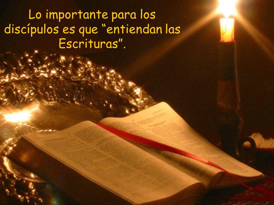 Lo importante para los discípulos es que entiendan las Escrituras .