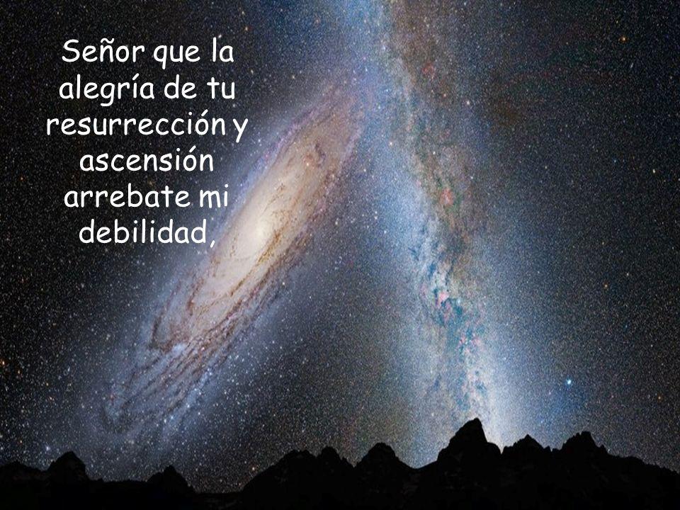 Señor que la alegría de tu resurrección y ascensión arrebate mi debilidad,