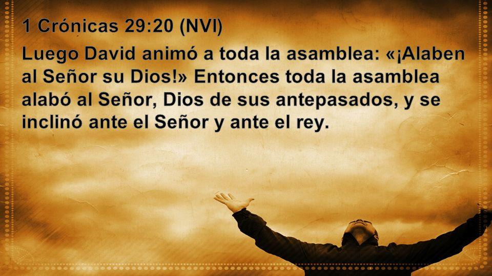 1 Crónicas 29:20 (NVI)