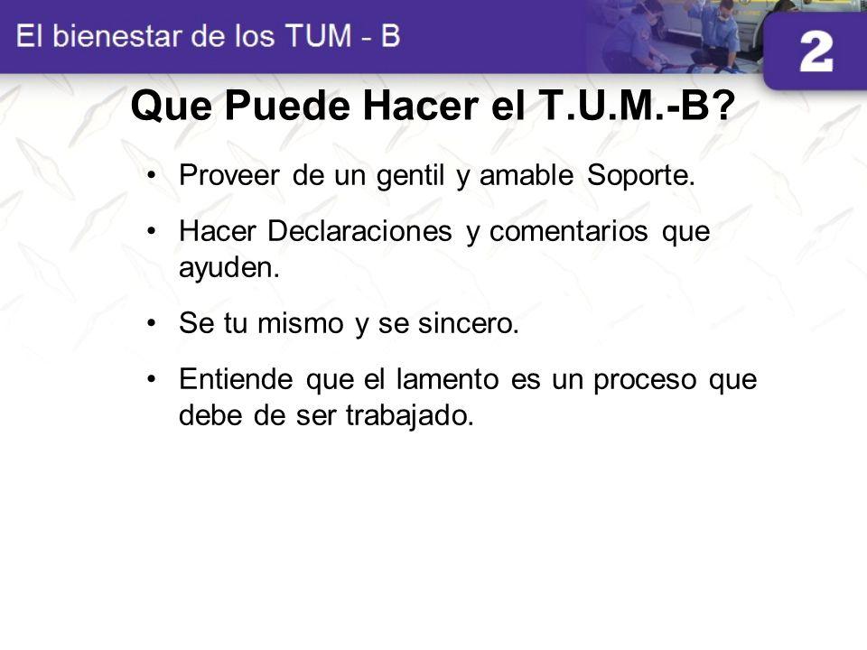 Que Puede Hacer el T.U.M.-B
