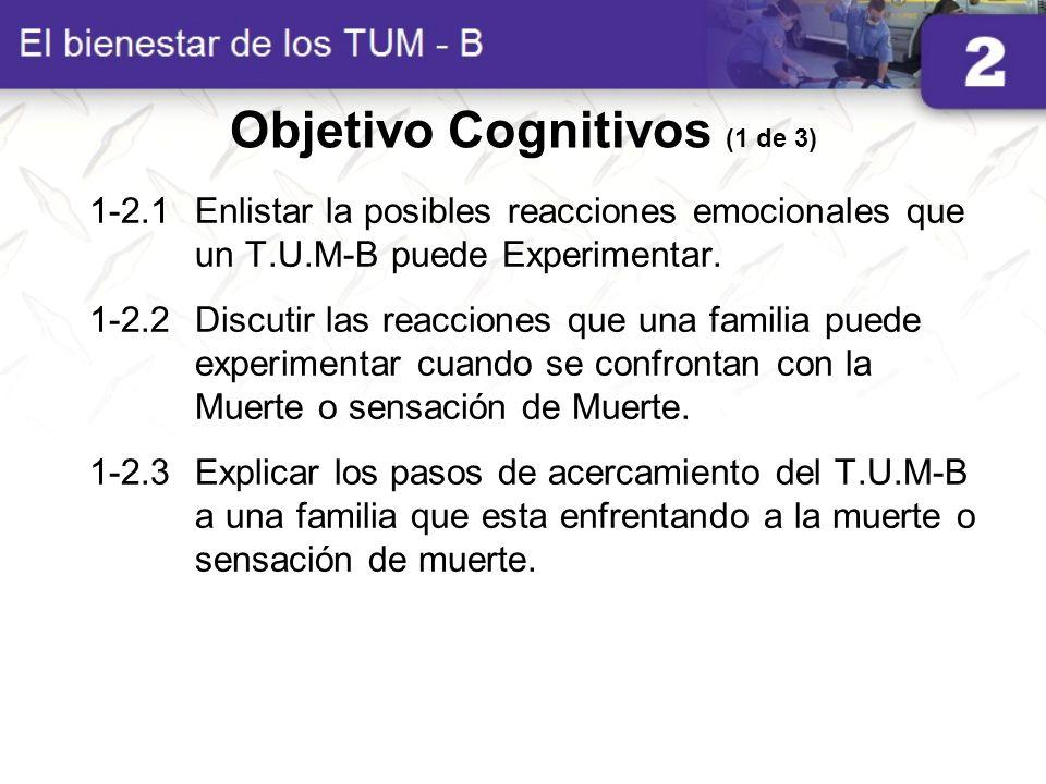 Objetivo Cognitivos (1 de 3)