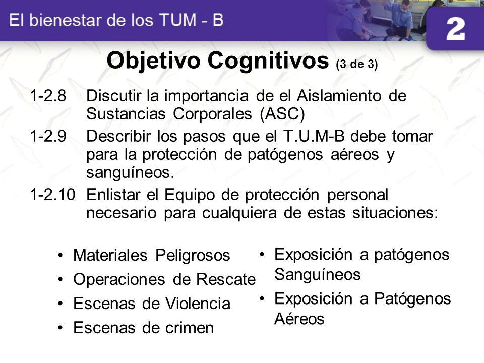 Objetivo Cognitivos (3 de 3)