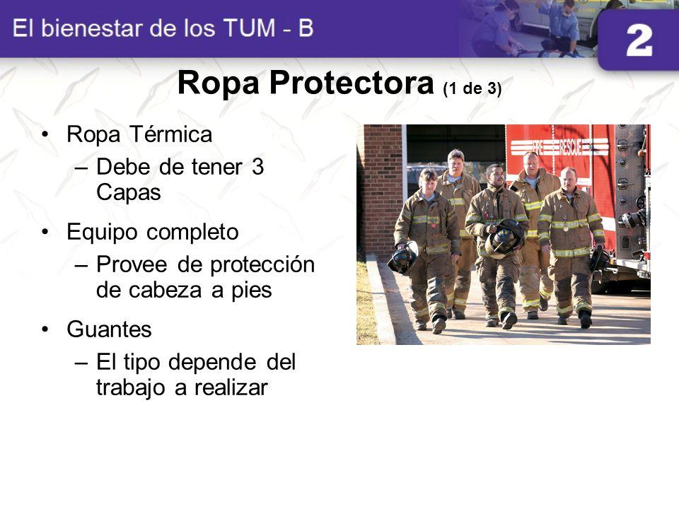 Ropa Protectora (1 de 3) Ropa Térmica Debe de tener 3 Capas