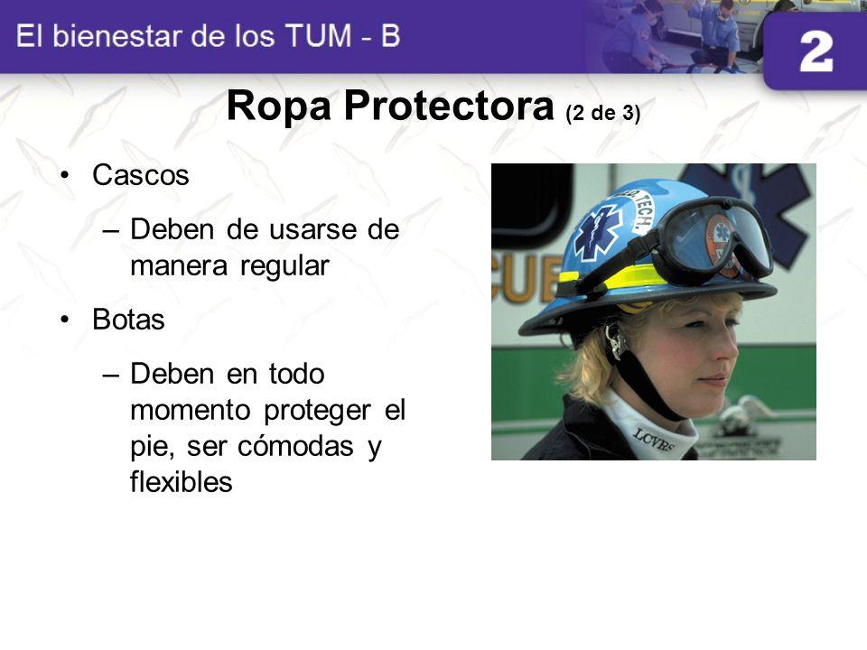 Ropa Protectora (2 de 3) Cascos Deben de usarse de manera regular