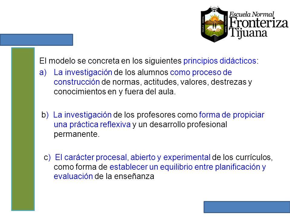 El modelo se concreta en los siguientes principios didácticos: