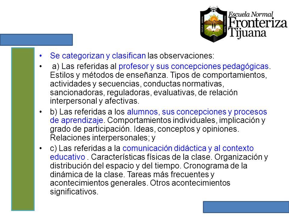 Se categorizan y clasifican las observaciones: