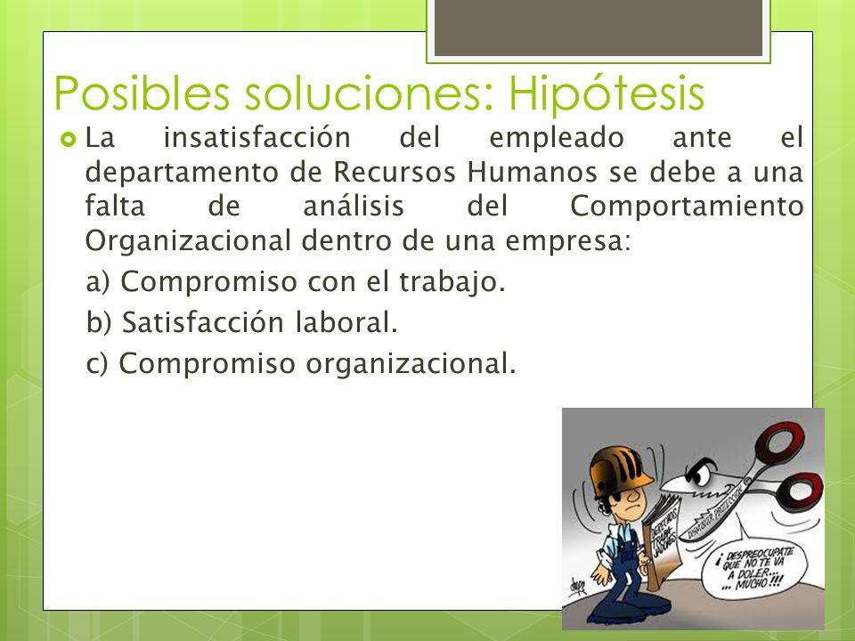 Posibles soluciones: Hipótesis