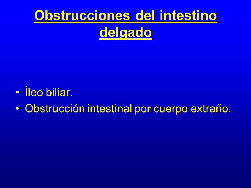 Obstrucciones del intestino delgado
