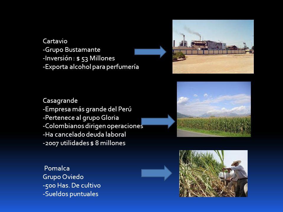 Cartavio-Grupo Bustamante. -Inversión : $ 53 Millones. -Exporta alcohol para perfumería. Casagrande.