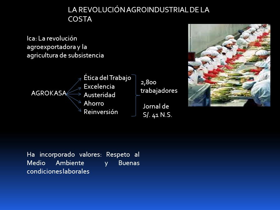 LA REVOLUCIÓN AGROINDUSTRIAL DE LA COSTA